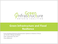 cover page of Green Infrastructure and Flood Resilience presentation