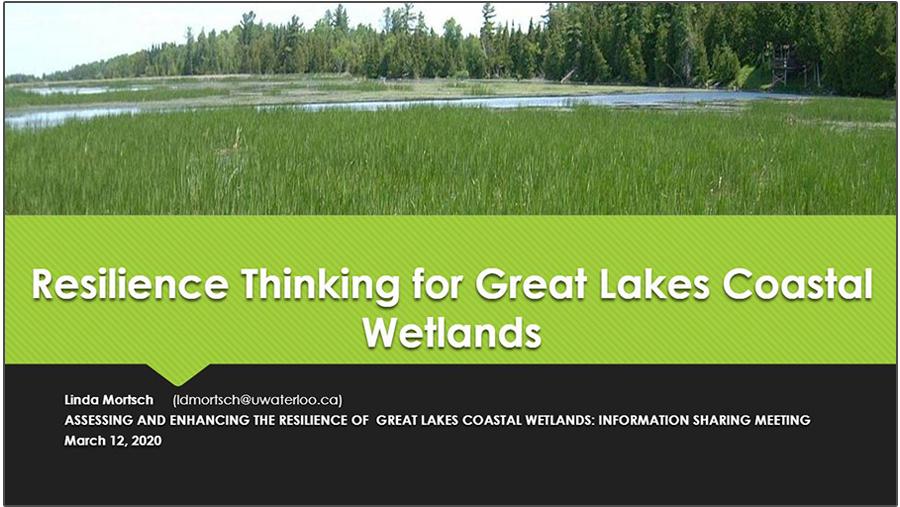 cover page of Resilience Thinking for Great Lakes Coastal Wetlands presentation